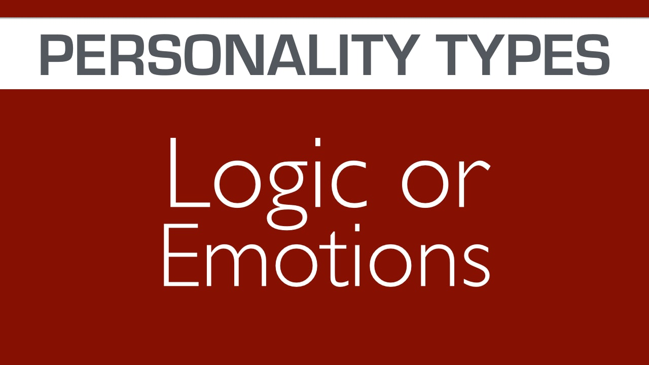 personalities intuitive or detail oriented from byrdseed tv mbti tf